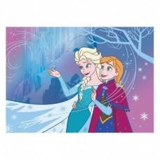 Disney Frozen vloerkleed 95 x 133 cm